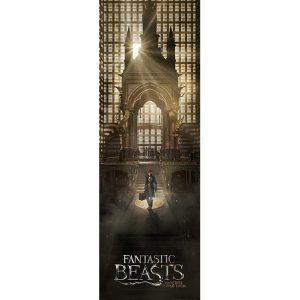 Fantastic Beasts Door Poster 321