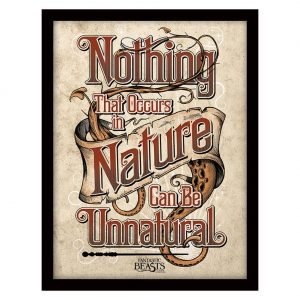Fantastic Beasts Framed Picture Nature 16 x 12