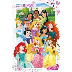 Disney Princess Poster 286