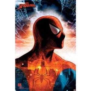 Spider-Man Poster 112
