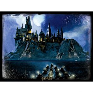 Harry Potter 3D Image Puzzle 500pc Hogwarts Night