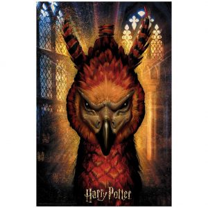 Harry Potter 3D Image Puzzle 300pc Fawkes