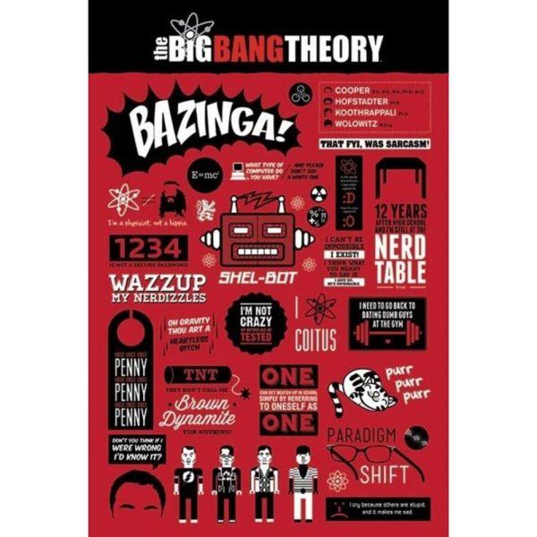 The Big Bang Theory Poster Infographic 136