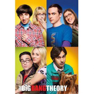 The Big Bang Theory Poster Group 137