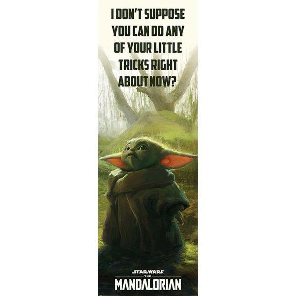 Star Wars: The Mandalorian Door Poster 307