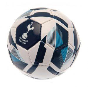 Tottenham Hotspur FC Skill Ball RX