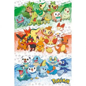 Pokemon Poster First Partners 144